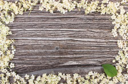 Frame of elderberry flowers on rustic wooden board, alternative medicine, copy space for text or inscription Stok Fotoğraf