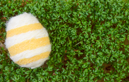 berro: Easter eggs wrapped woolen string and fresh green cuckooflower cress, copy space for text or inscription, decoration for Easter Foto de archivo