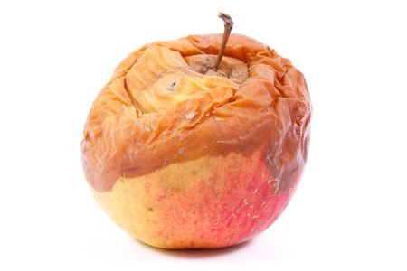 Old wrinkled moldy apple on white background, unhealthy and disgusting eating