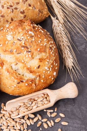 Fresh wholegrain rolls with seeds and ears of rye or wheat grain