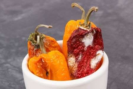 Old wrinkled moldy peppers in white bowl on dark background, concept of unhealthy and disgusting vegetable