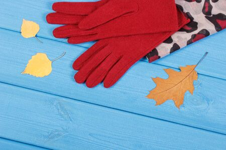 Gloves and colorful shawl for woman on boards. Warm clothing for autumn or winter Stok Fotoğraf