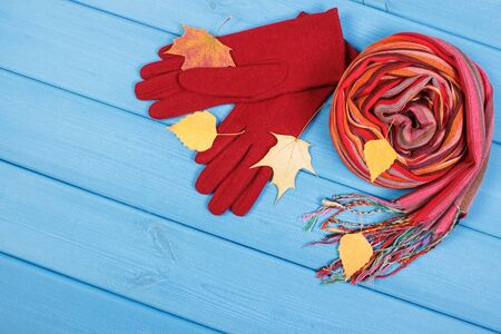 Woolen gloves and colorful shawl for woman. Warm clothing for autumn or winter, place for text Stok Fotoğraf