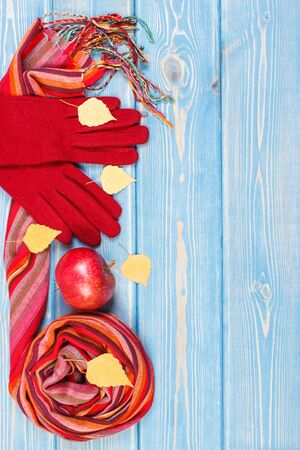 Womanly woolen gloves and shawl with autumnal decoration on old boards. Clothing for autumn or winter, place for text
