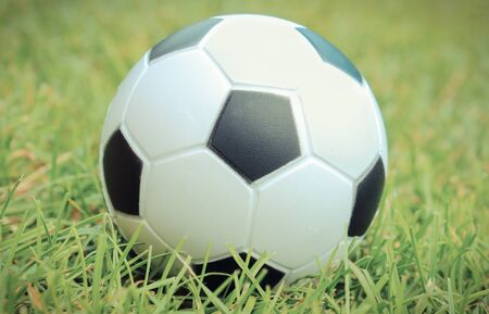 Small black and white stress ball lying on green grass. Soccer ball on grass