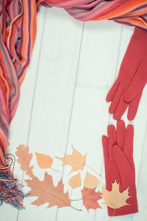 Vintage photo. Frame of colorful shawl, gloves for woman and autumnal leaves on white boards