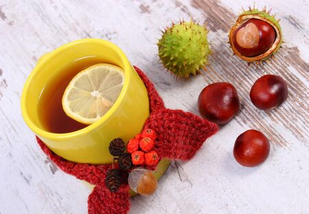 Cup of tea with lemon wrapped woolen scarf. Warming beverage for flu and cold Stockfoto