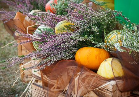 Seasonal decorations made of heather and vegetables. Concept of harvest time Stock Photo