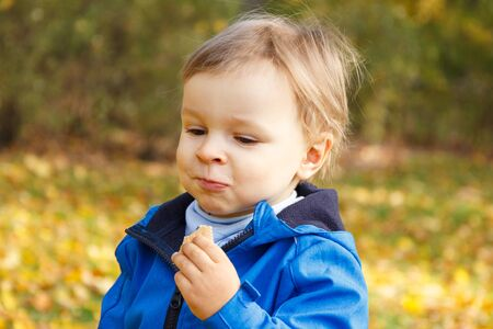 Little baby boy eating biscuit or cookies in autumn park. Concept of dessert for kids