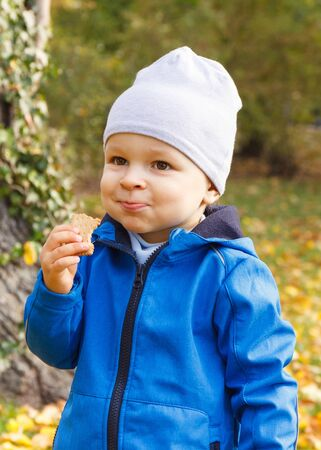 Little child eating biscuit or cookies in autumn park. Concept of dessert for kids