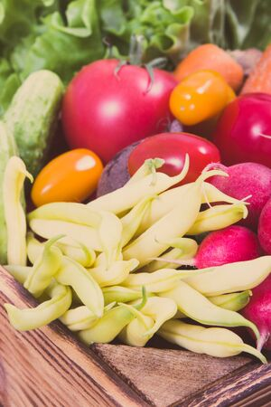 Fresh ripe vegetables as healthy ingredients containing vitamins and minerals using for cooking different dishes