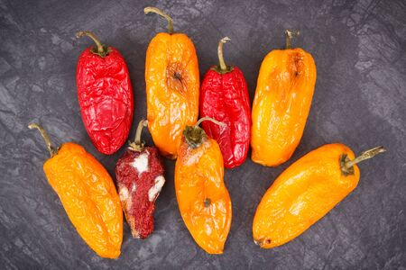 Old wrinkled peppers with mold, concept of unhealthy and disgusting food Standard-Bild