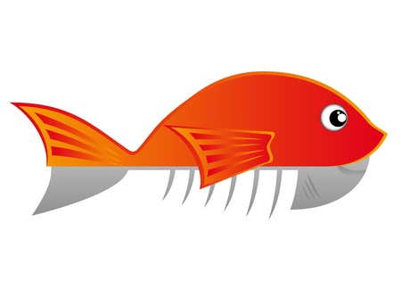 rasp: Drawing of a fish cut in half