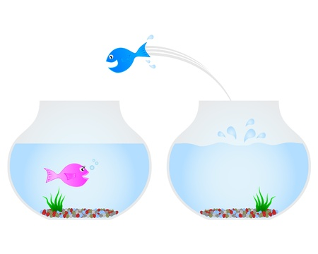 goldfish jump: Fish jumping into another tank