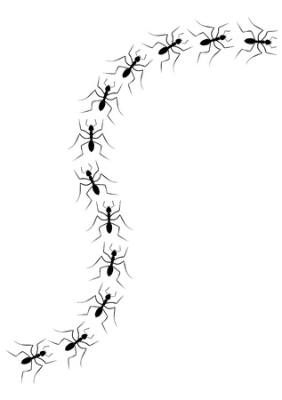 Linie der Ameisen in Wellenform