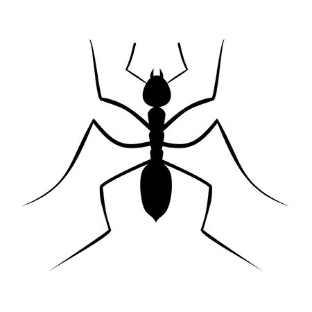 legs up: Illustration of a black ant