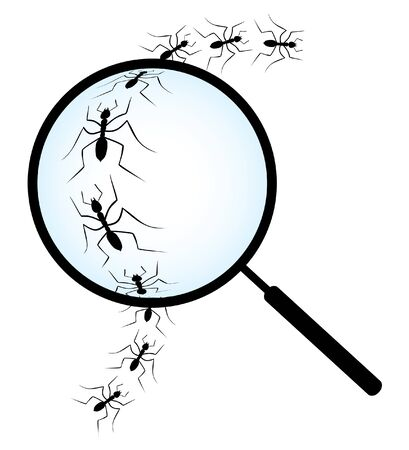 Magnifying glass on line of ants Illustration