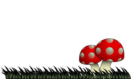 wild mushrooms: Grass floor with two mushrooms