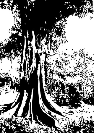bohemian: Vector illustration of black and white tree