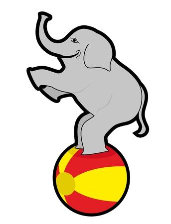 balancing: Elephant balancing on a ball