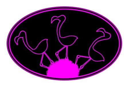 flamingi: Owalne godło z trzema flamingów
