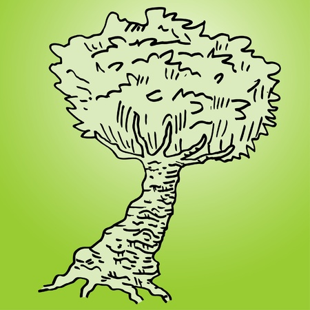 Green background with hand drawing tree Stock Vector - 11498641