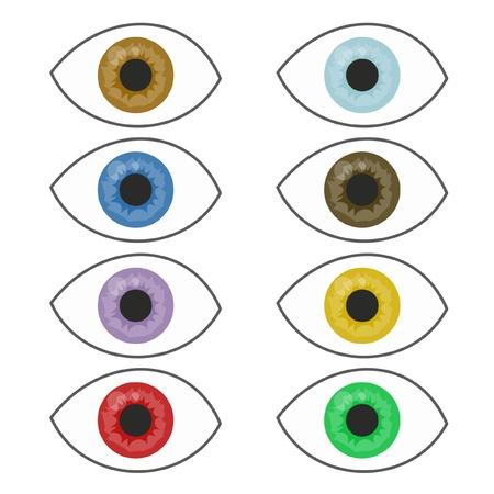 Color eyes Stock Vector - 12484157