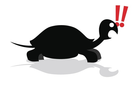 Amazing turtle Vector