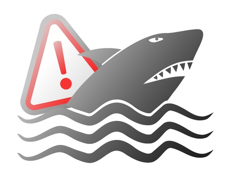swiming: Danger shark