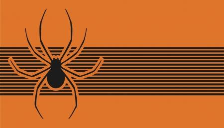 black widow: Spider card