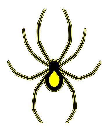 black widow: Spider art