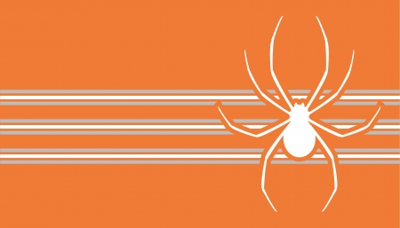 Spider card Stock Vector - 15291278