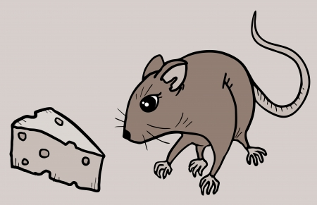 Rat food Vector