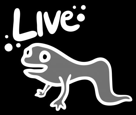 tadpole: Live small animal