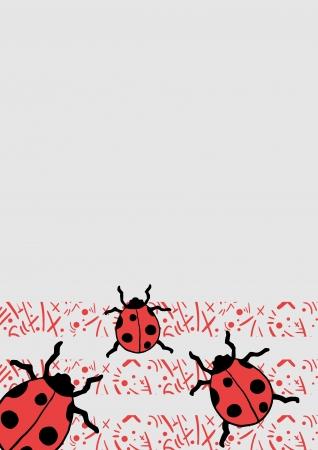 lady bug: Lady Bug Hintergrund