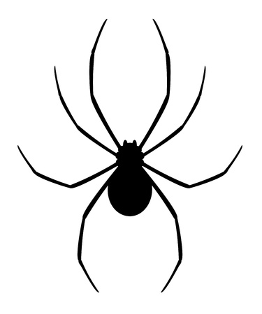 cartoon spider: Black spider Illustration