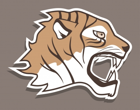Tiger sticker Vector