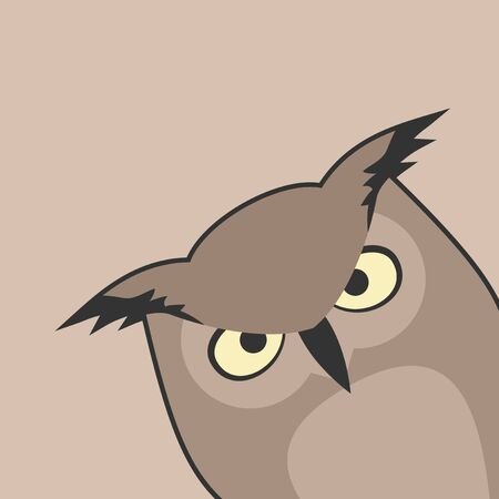 nocturnal animal: Serious owl