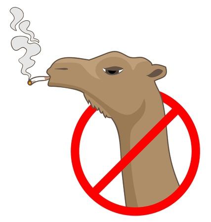 No smoke zone Vector