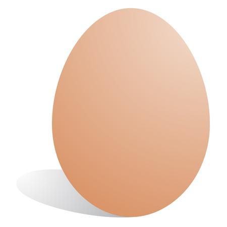 oviparous: Vector egg Illustration
