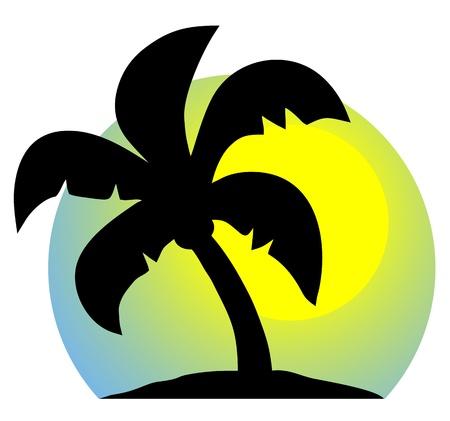 dattelpalme: Hot Urlaub