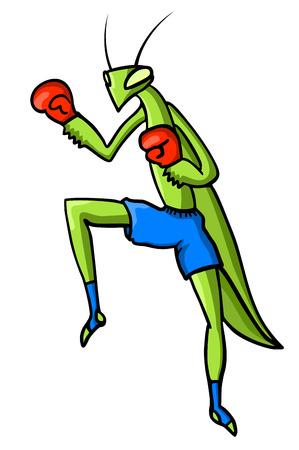 mantis: Mantis fight Illustration