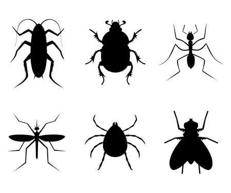 dimensinal: Six insects