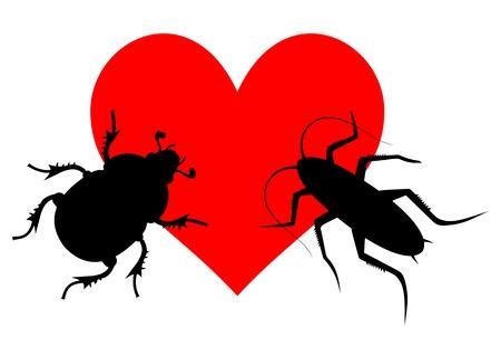 suitor: Amore Insetto Vettoriali