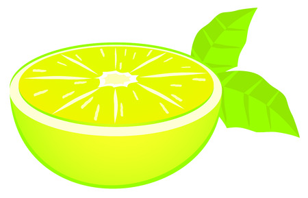 limon: Lemon fruit Illustration