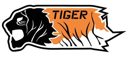 Tiger card Vector