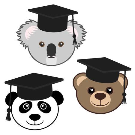 University bears Vector