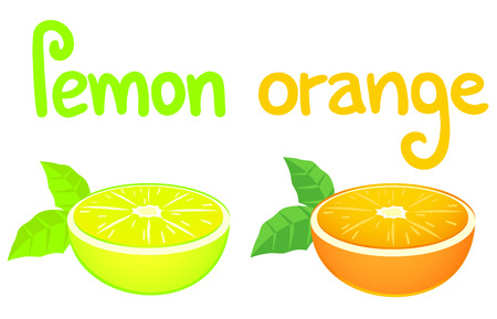 Lemon and orange Vector