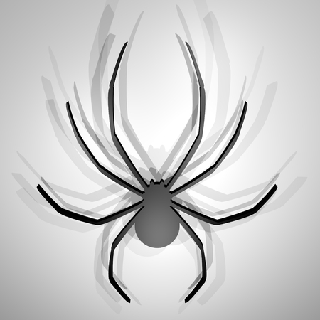 Render spider photo