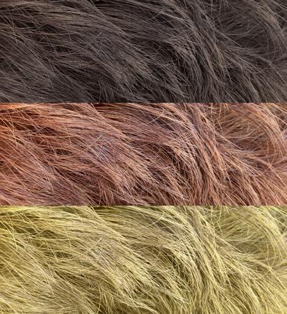 color hair: Color hair